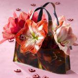 Zdj�cie 3 - Ciekawe kompozycje kwiatowe