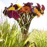 Zdj�cie 36 - Ciekawe kompozycje kwiatowe