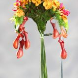 Zdj�cie 39 - Ciekawe kompozycje kwiatowe