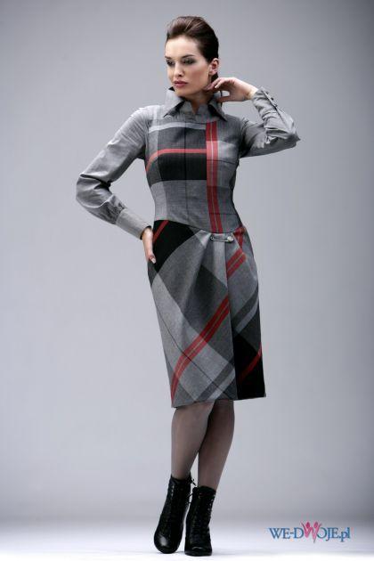 grafitowa sukienka Modesta w kratkę - jesień/zima 2010/2011