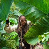 foto 3 - Piraci z Karaibów (reż. Rob Marshall)