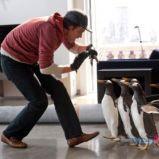 foto 2 - Pan Popper i jego pingwiny (reż. Mark Waters)