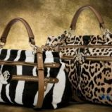 torebka Roberto Cavalli w zebr� - kolekcja wiosenno/letnia