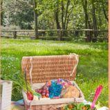 foto 2 - Inspiracje na piknik od Zara Home