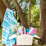 foto 4 - Inspiracje na piknik od Zara Home