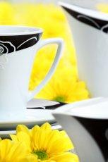 Pi�kny serwis kawowy w kolorze  -nowo�ci od �miel�w