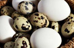 Zdrowe jedzenie dla alergik�w - nabia� i inne produkty