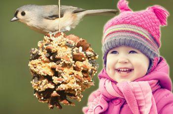 Karmnik dla ptak�w z szyszki - DIY