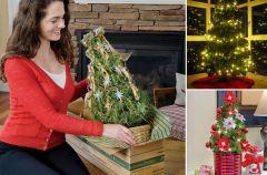 Wybieramy choink� na Bo�e Narodzenie