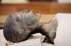 Tutanchamon - prawda skrywana w grobowcu na Discovery World!