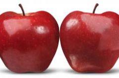 Dieta dla os�b z BMI powy�ej 30