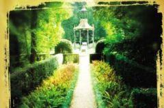 Judith Lennox - Florenckie lato