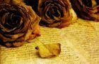 Recenzja ksi��ki Lise Dion - Tajemnica niebieskiego kufra