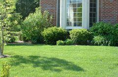 Zadbaj o trawnik na wiosn�
