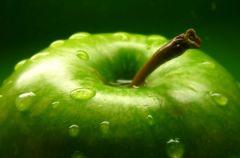 Zielone jab�uszko