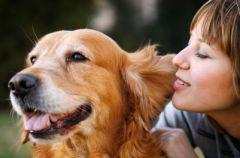 Pies - najlepszy terapeuta