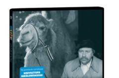Du�e zwierz� na DVD - ROZWI�ZANIE KONKURSU!!!
