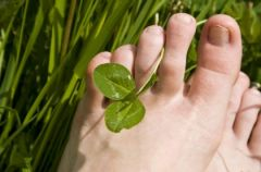Refleksologia - czyli wr�enie ze stopy