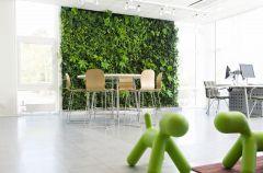 �ciana zieleni, czyli natura we wn�trzu