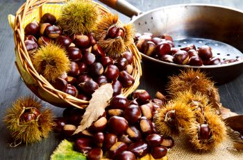 Kulinarne r�no�ci - Kasztany jadalne