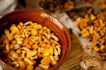 15 przepis�w na dania z kurkami