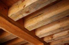 Jak skutecznie zwalczy� szkodniki w starym drewnianym domu?