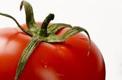 Pomidory z pokrywk�