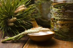 Jak zrobi� syrop z sosny?