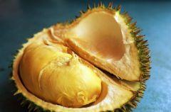 Durian - �mierdz�cy kr�l owoc�w