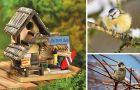 Designerskie domki dla ptak�w