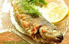 Smaczne propozycje kulinarne z bloga Agata gotuje