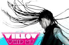 Willow Smith wkracza na muzyczny rynek