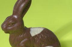 Drogie kr�liczki Wielkanocne