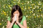 Proste sposoby na alergie