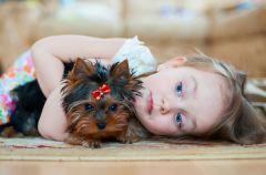 Jak uczy� dziecko szacunku do zwierz�t?