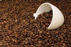 Kawa arabica i robusta