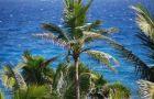 Kuba - W dolinie s�o�ca