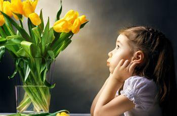 Kwiaty ci�te - jak o nie dba�?