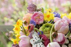 Aran�acje kwiatowe wiosna/lato 2010