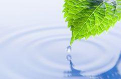 Ile wody potrzebuje cz�owiek?