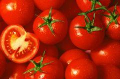 Pomidory i uroda