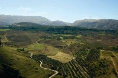 Pod s�o�cem Andaluzji