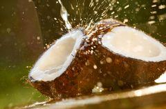 Olej kokosowy przeciw pr�chnicy