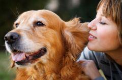 Jak przygotowa� psa na pojawienie si� dziecka?