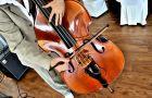 Orkiestra na �lub i wesele