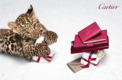 Ma�a pantera twarz� �wi�tecznej kampanii Cartier