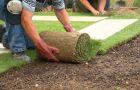 Zak�adanie trawnika - sianie nasion i uk�adanie trawy z rolki