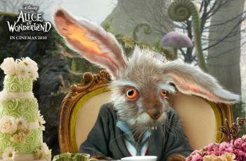 Zaj�czek czy kr�liczek - Playboy