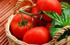 Pomidory - dlaczego warto je je��?