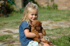 Chomik, kot, pies... Jakie zwierz� dla dziecka?